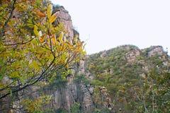 Гранд-каньон Yangshao стоковое фото