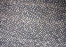 Гранит или конкретным поставленный точки серым цветом вид решетки Grained задняя часть камня Стоковое фото RF
