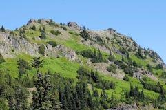 Гранит и зеленый горный склон Стоковые Фото