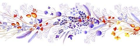 Граница акварели сирени естественная Естественные cliparts для wedding дизайна, художнического творения иллюстрация вектора