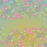 Граница барбариса, нарисованная вручную картина ягоды Стоковые Изображения