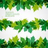 Граница вектора с зелеными листьями иллюстрация Стоковые Изображения