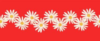 Граница вектора цветков маргаритки безшовная Огорченные белые винтажные цветки стоцвета на красной бесконечной картине современно иллюстрация вектора