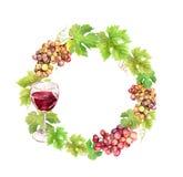 Граница венка с виноградиной, бокалом и листьями Рамка круга акварели Стоковое Изображение