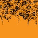 Граница диаграммы поля тыквы Черный чертеж на апельсине иллюстрация штока
