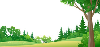 Граница леса Стоковое Изображение