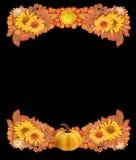 Граница или рамка осени с тыквой, высушенными цветками, и листьями Стоковое фото RF
