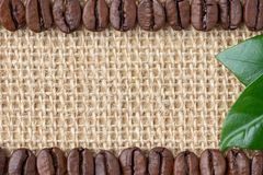 Граница кофе Фасоли и лист над предпосылкой мешковины стоковое изображение rf