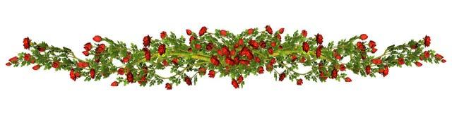 Граница красных роз Стоковые Фото