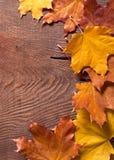 Граница осени на древесине Стоковые Фото