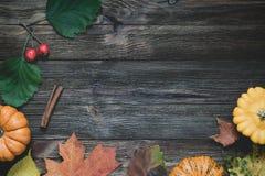 Граница осени с упаденными листьями и тыквами Стоковое фото RF