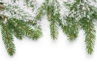 Граница от хворостин ели и поддельного снега стоковое изображение rf