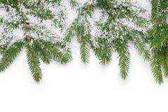 Граница от хворостин ели и поддельного снежка стоковая фотография