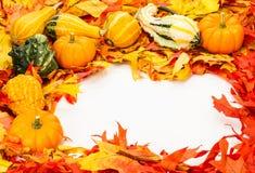 Граница падения цветастых листьев Стоковая Фотография