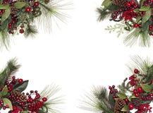 граница предпосылки кладет тесемки в коробку подарка рождества золотистые изолированные белые Стоковые Фото