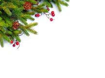 граница предпосылки кладет тесемки в коробку подарка рождества золотистые изолированные белые Ветви ели украшенные с ягодой падуб Стоковое Изображение