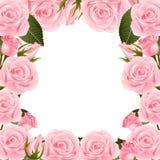 Граница рамки цветка Розы пинка белизна изолированная предпосылкой также вектор иллюстрации притяжки corel бесплатная иллюстрация