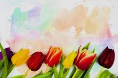Граница рамки цветка Стоковое Изображение