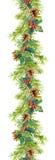 Граница рождества - ветви ели с конусами и омелой Рамка акварели Стоковое Изображение
