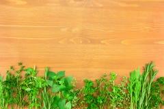 Граница свежего собрания трав Стоковые Изображения RF