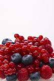 Граница свежих ягод с зеленым цветом, изолированных листьев Стоковые Фото