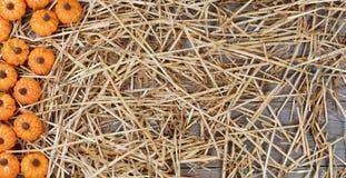 Граница тыкв на высушенной соломе и деревенской древесине для hol осени Стоковая Фотография RF