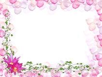 граница флористическая Стоковые Фотографии RF