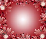 граница флористическая Стоковое Изображение RF