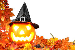 Граница хеллоуина Стоковые Фото