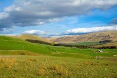 граничит гористые местности шотландские Стоковое Изображение