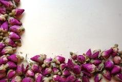 Граничьте рамку романтичных высушенных бутонов розы пинка Стоковое Изображение RF