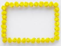 граничьте цыпленоки сделанную пасху Стоковое фото RF