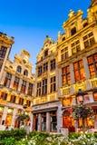 Грандиозное место, Брюссель, Бельгия Стоковые Фотографии RF