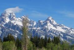 Грандиозное дуновение снега саммита Teton Стоковые Фотографии RF