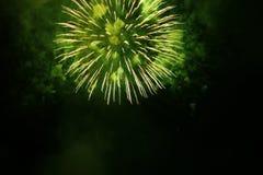 Грандиозные фейерверки Стоковые Фото