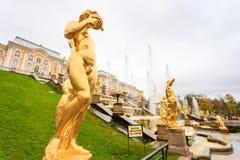 Грандиозный дворец Peterhof, грандиозный каскад и фонтан Samson Стоковое Фото