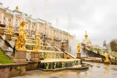 Грандиозный дворец Peterhof, грандиозный каскад и фонтан Samson Стоковое Изображение RF