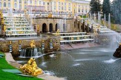 Грандиозный дворец Peterhof, каскад фонтана Россия Стоковые Фото