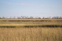 Грандиозный остров, Луизиана Стоковые Изображения