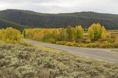 Грандиозный фотограф Teton Стоковые Фотографии RF