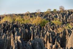 Грандиозн Tsingy de Bemaraha стоковая фотография