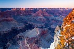 Гранд-каньон в зиме на сумраке Стоковое фото RF