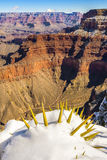 Гранд-каньон в зиме, США Стоковые Изображения