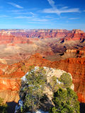 Гранд-каньон Соединенные Штаты Стоковое Фото
