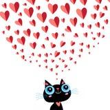 Графики влюбились маленький котенок Стоковая Фотография