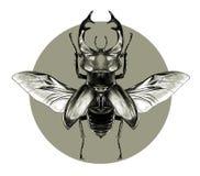 Графики эскиза жука рогача Стоковые Изображения RF