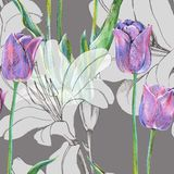 График цветет голубой тюльпан с лилией на серой предпосылке флористическая картина безшовная Стоковое Изображение