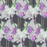 График цветет голубой тюльпан с лилией на серой предпосылке флористическая картина безшовная Стоковые Фото