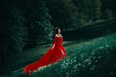 Графиня в длинном красном платье стоковые фото