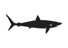 Графическая акула, вектор иллюстрация штока